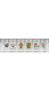 GLASS BEER MUGS -SET OF 6 ASSORTED
